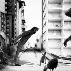 """Serie """"Ucronìe"""" La Furia Urlante- 2014"""